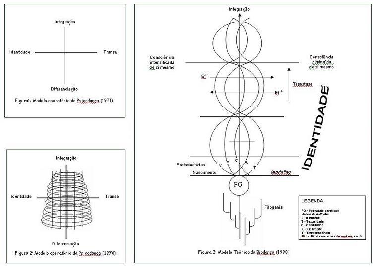 BIODANÇA - EVOLUÇÃO DO MODELO TEÓRICO