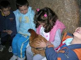 Coa galiña dos ovos ...