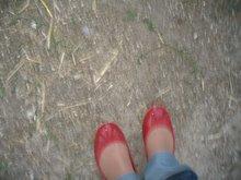 Con zapatiños vermellos