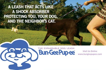Don't Get Hurt By Your Pet's Sudden Moves