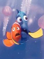 Buscando a Nemo!