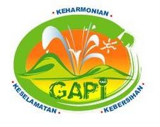 Logo GAPi