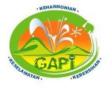 Logo GAPi