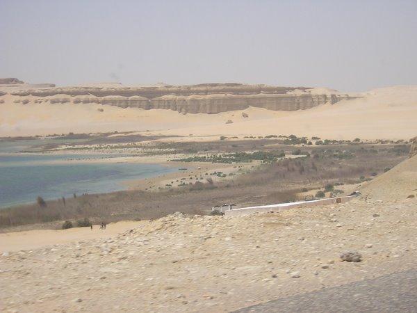 Wadi Rayan 3