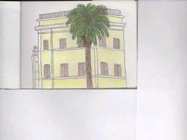 rome. palm tree