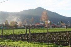 Entrada a Joaquìn Olivares,en Camino a Rinconada