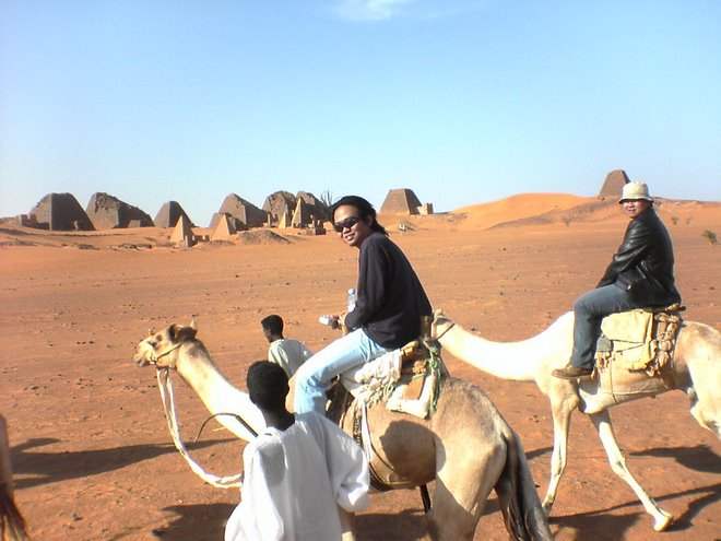 Camel Anyone?