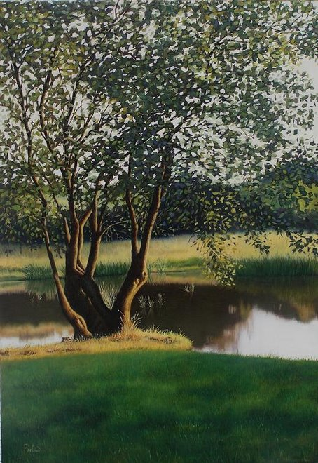 Un árbol en el lago