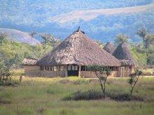 Indigenous Venezuelan hut