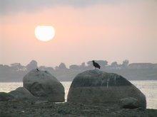 Orinoco Sunrise