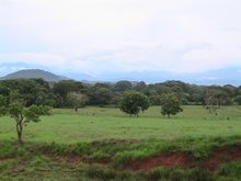 Lush farmland - Panama