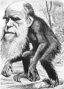 "Charlie Darwin""s degree"