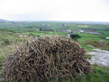 Charred furze sticks, known locally as stogs,gathered from a previous burn,Carn Bosavern St Just