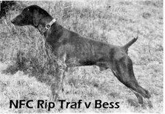 NFC Rip Traf v Bess
