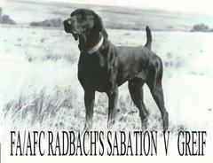 FC/AFC Radbach's Sabation v Greif