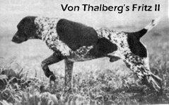 Von Thalberg's Fritz II