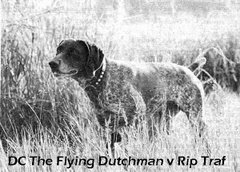 DC The Flying Dutchman v Rip Traf