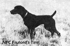 NFC Frulord's Tim