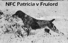 NFC Patricia v Frulord