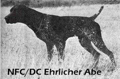 NFC DC Ehrlicher Abe