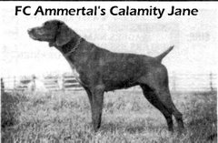 FC Ammertal's Calamity Jane
