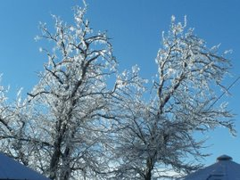 December ice storms
