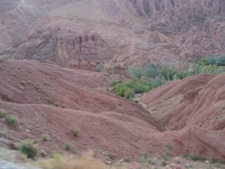 another picutre of dades