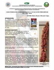 CARACTERIZACION AGROMORFOLOGICA