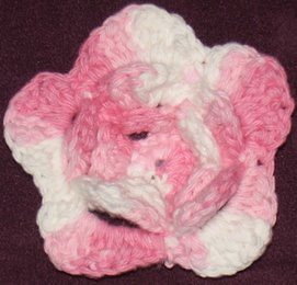 Pink and White Flower Magnet