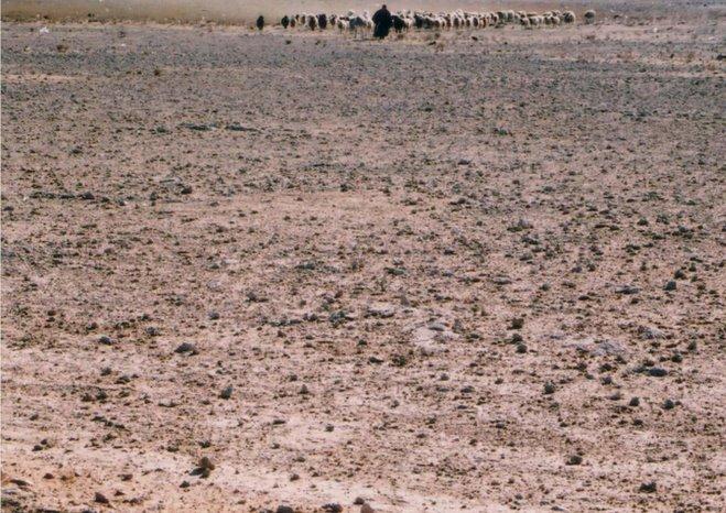 photographie argentique deir-er-zor2005