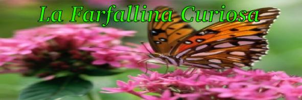 La farfallina curiosa