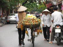 Bringing Pineapple to Market