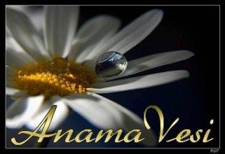 AnamaVesi