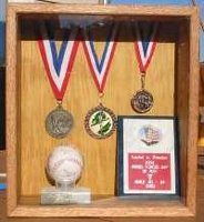 military memorabilia display case - shadow box - Maxis Minis