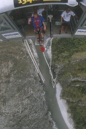 N.Z. Bungy