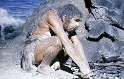 DE LA EVOLUCION......
