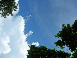 100% dans les nuages
