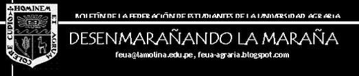 DESENMARAÑANDO LA MARAÑA