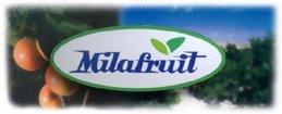 MILAFRUIT CONSERVAS