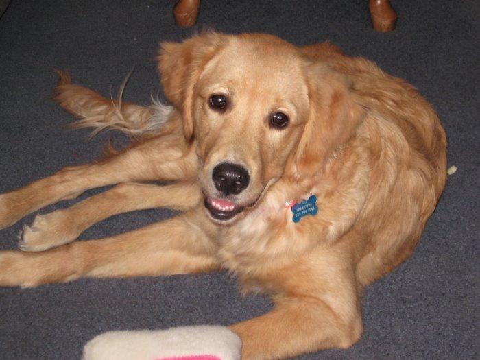 Madison- 6 months