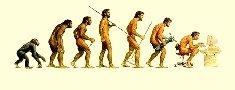 (d)evolução
