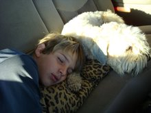 Me and my dog sleeping