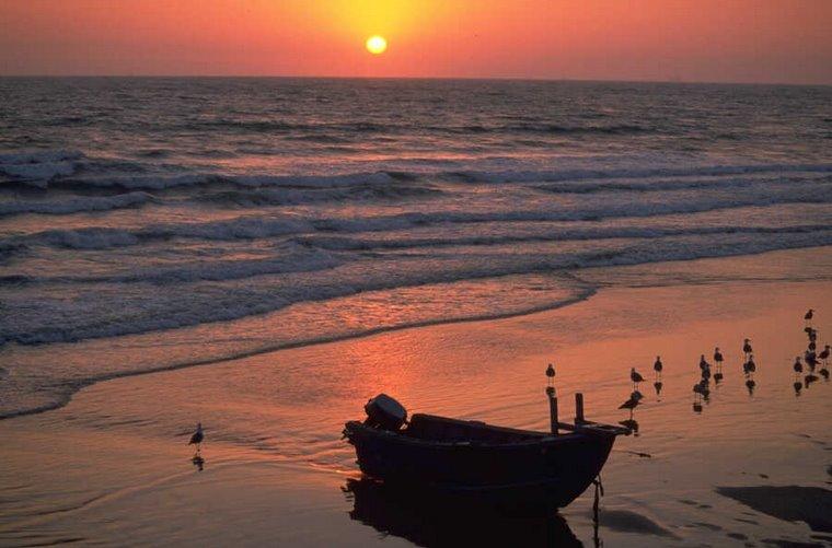 """Louvem-nO os céus e a terra, os mares e tudo o que neles se move"". (Sl 68,35)"