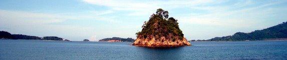 last island standing