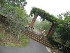 Enid in Singapore
