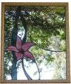 Orchid Mirror