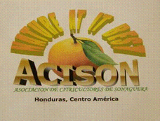 ACISON - Orange Growers of Sonaguera
