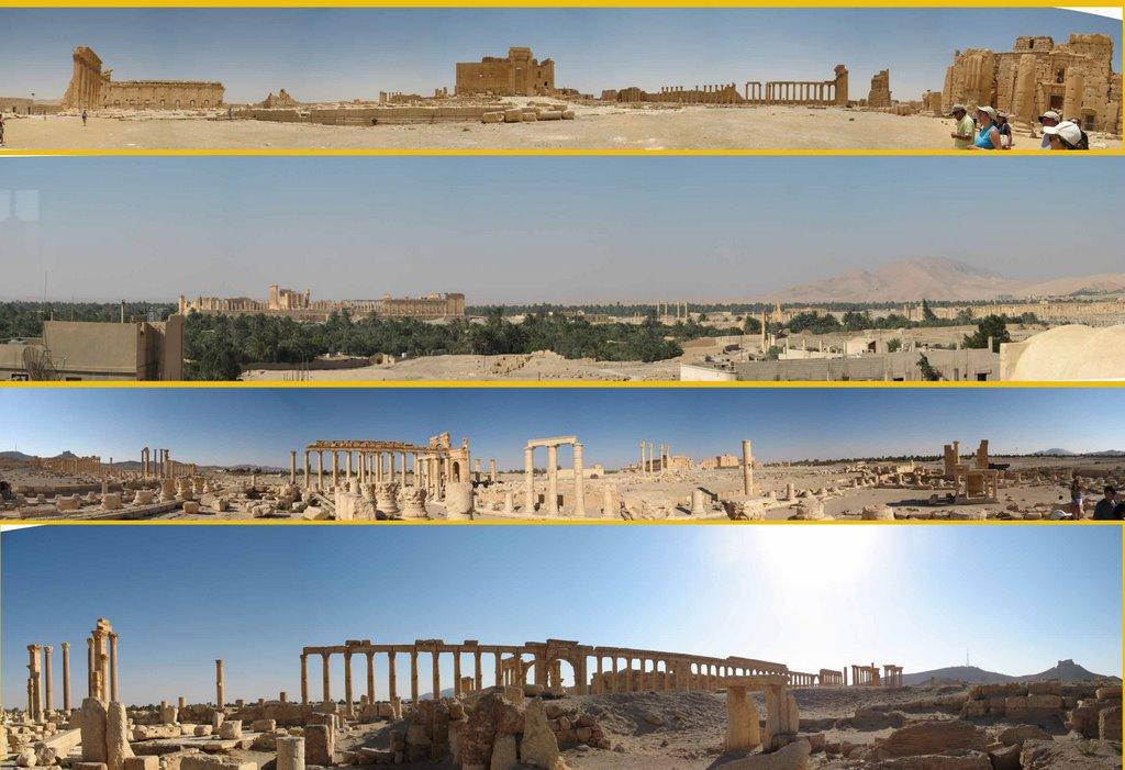 ...........Mas vistas de Palmyra
