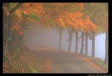 Jalan Ke Kiri Berkabut