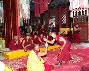 Asian Tibetan Debate
